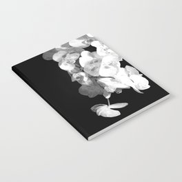 White Orchids Black Background Notebook