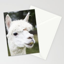 A llama peers at a passerby from its copse on a farm near Plato in LaGrange County Indiana Stationery Cards