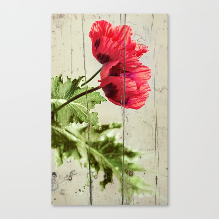 The Things We Remember - red poppy photo on wood texture Canvas Print