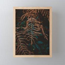 Beara Brown Fern Framed Mini Art Print