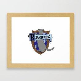Ravenpaw Framed Art Print