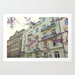 Blossom, Prague. Art Print