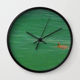 Turtle swimming in green waters Wall Clock
