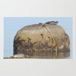Seals and Boulders Rug