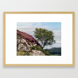 Dunadd Rowan Framed Art Print