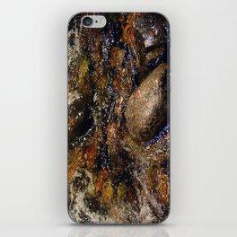Stream and Stones iPhone Skin