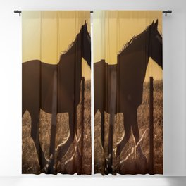 Wyoming Clydesdale Blackout Curtain