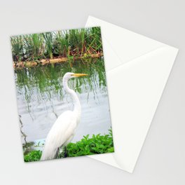 The Great White Egret:) (pointillism) | Large White Bird | Nature Photography Stationery Cards