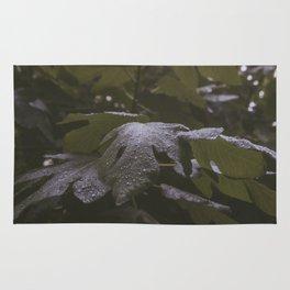 Wet Leaf Rug