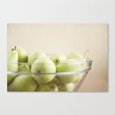 More pears Canvas Print
