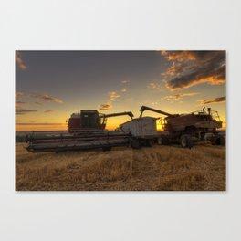 Golden Hour Grain Canvas Print