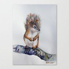 Watercolor Baby Squirrel Woodland Animals Nursery Series Canvas Print