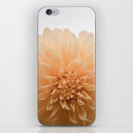 Palest Coral Flower iPhone Skin