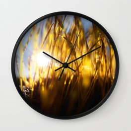 Lichen Inside Wall Clock