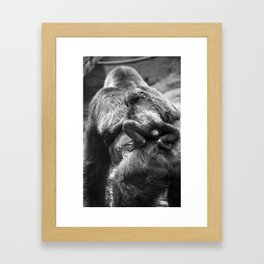 Gorillas baby Framed Art Print