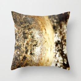 Texture abstract 2017 002 Throw Pillow