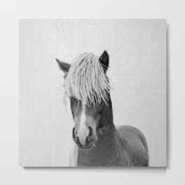 Horse - Black & White Metal Print