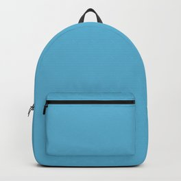 Unrestrained Mid Tone Blue Solid Color Pairs To Sherwin Williams Flyway SW 6794 Backpack