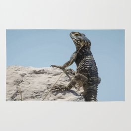 Lizard Sunbathing On A Rock Vector Rug