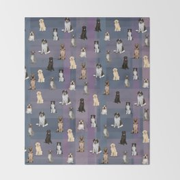 Sit, Smile Large Dogs in Multi color Throw Blanket