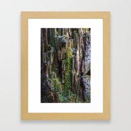 cliff trunk Framed Art Print