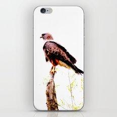 Eagle iPhone & iPod Skin
