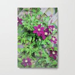 Solstice Flowers Metal Print