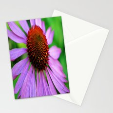 Purple Coneflower Stationery Cards