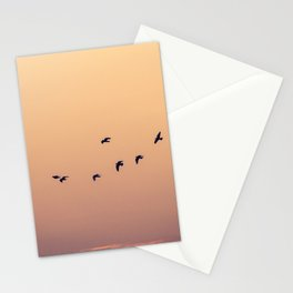 Pájaros Stationery Cards
