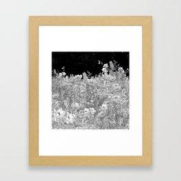 Night Chill Framed Art Print