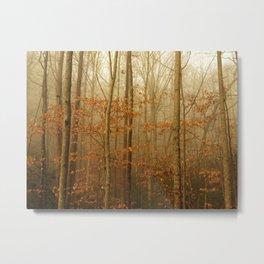 Forest Awakens Metal Print