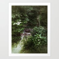 woodland Art Prints featuring Woodland by Geni