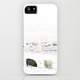 Icelandic Sheep IIII iPhone Case