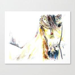 Bedazzled Arabian Canvas Print