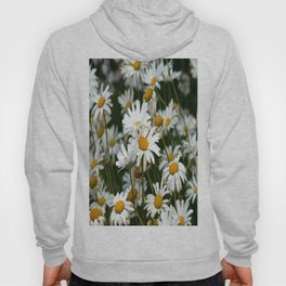 Field of Daisies Hoody