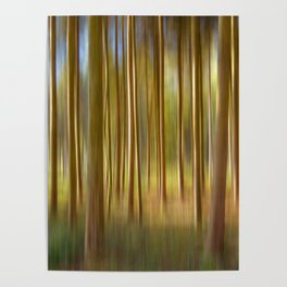 Concept nature : Magic woods Poster