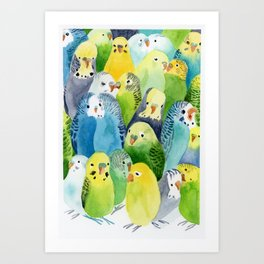 Budgie Village Art Print