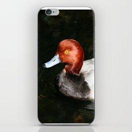 Male Redhead Duck iPhone Skin