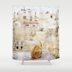 Cat Overlooking Ancient Ruins, Israel Shower Curtain