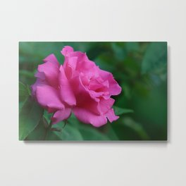 A Rose For My Love Metal Print