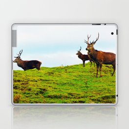 Stags on the hill Laptop & iPad Skin