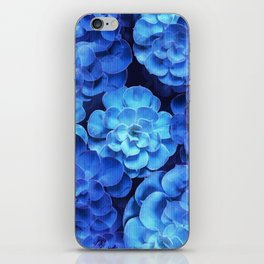 Succulent Plants In Blue Tones #decor #society6 #homedecor iPhone Skin