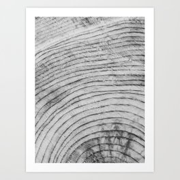 Tree Rings I Art Print
