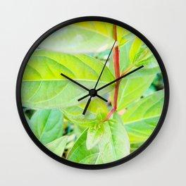 Happy Neon Green Fall Sapling Wall Clock