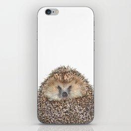 Hedgehog iPhone Skin