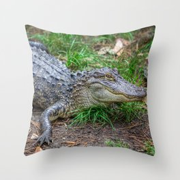 Alligator - Hello Darlin' Throw Pillow