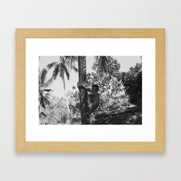 Climbing palm tree Framed Art Print