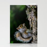 squirrel Stationery Cards featuring Squirrel by Fine Art by Rina