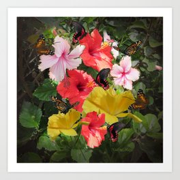 Hibiscus meeting Art Print