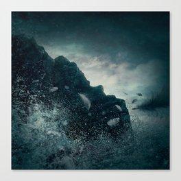 Fallen From Grace Canvas Print